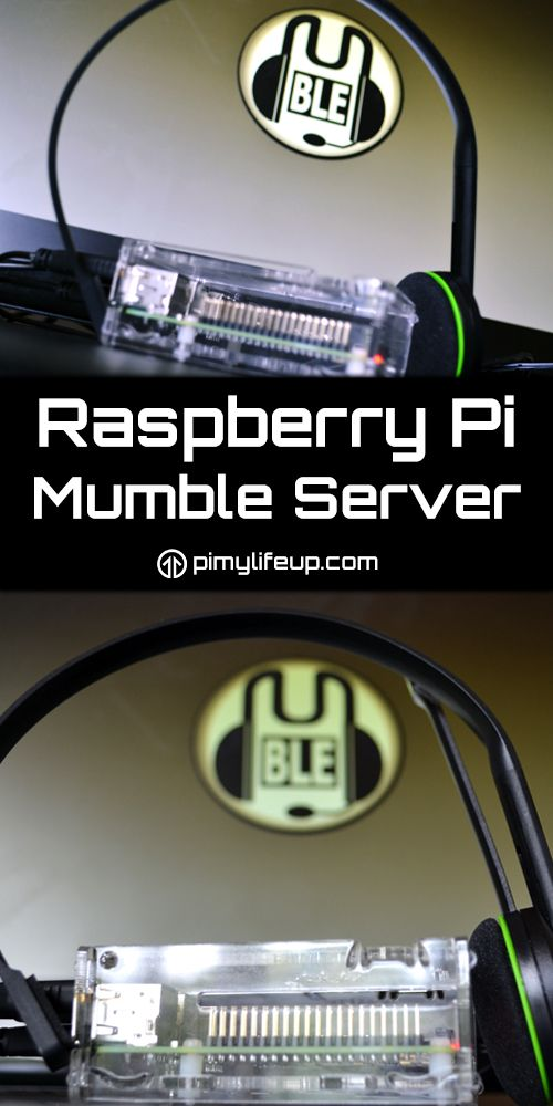 A mumble server can be installed on the Raspberry! It's a great solution for anyone who wants a VOIP server that they can share with a few friends.