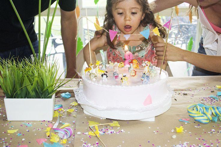 cumpleañera, torta decorada