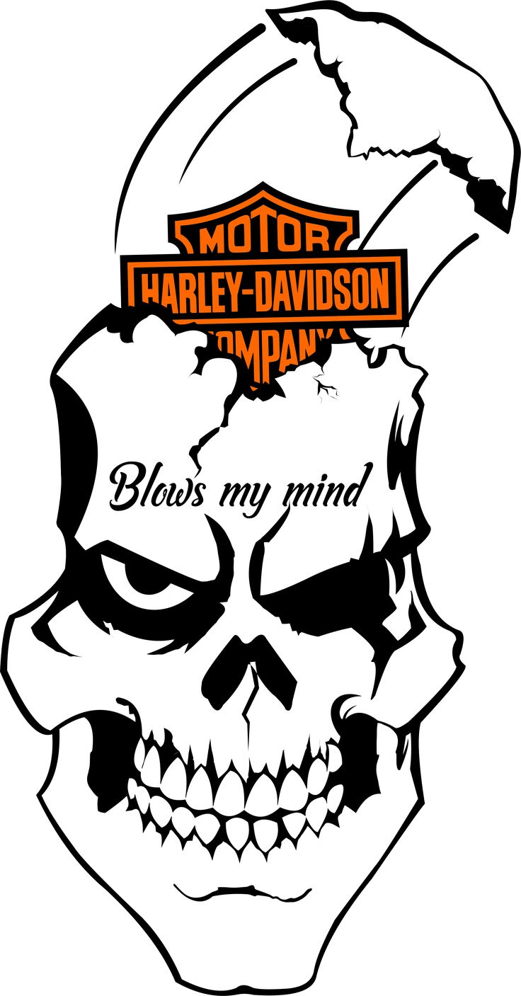 17 Best Images About Harley Decals Airbrush Gas Tank