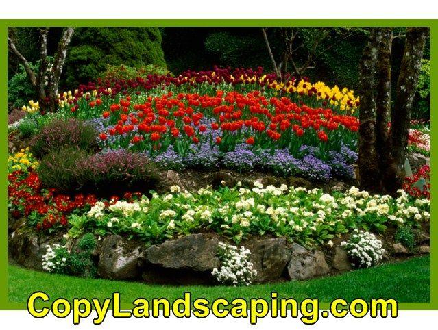 Cool info on  Landscape Design Plans003
