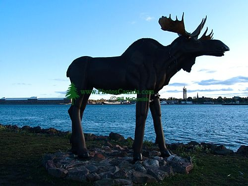 how to go to sault ste marie from toronto