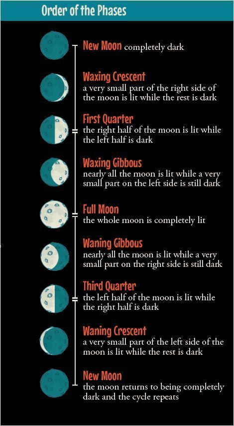 3 Unique Ways to Teach STEMists the Phases of the Moon                                                                                                                                                     More