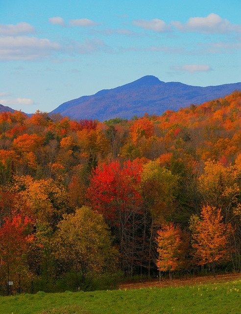 Vermont in the fall- just as gorgeous in person as it is in the pictures.