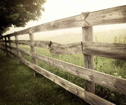 Rustic Home Decor, Country Landscape Print, Rustic Country Photo, Country Pasture and Fence, Country Fence Photo 8x10