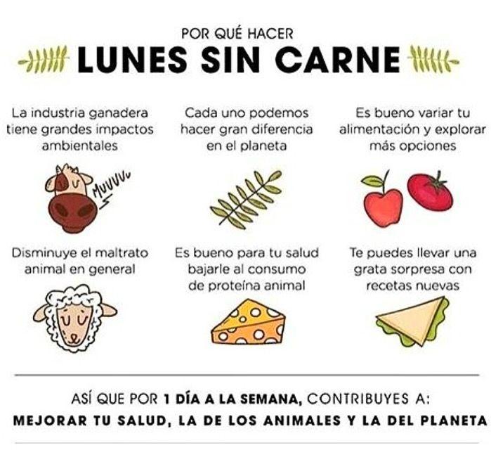 6 Razones para iniciarte en los #LunesSinCarne #CulturaGreen