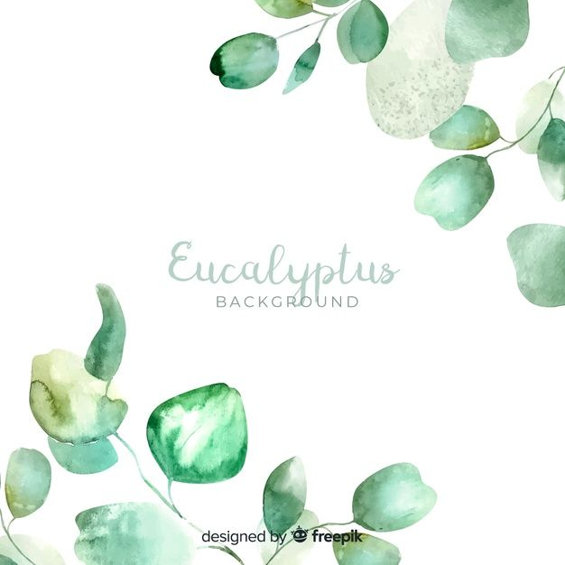 Download Watercolor Eucalyptus Leaves Background For Free In 2020