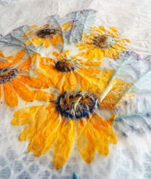 Press Flowers With Wax Paper | Tutorial and Instructions