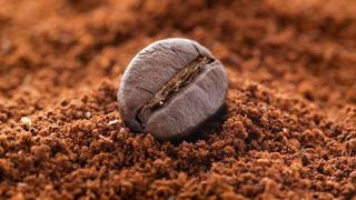 COFFEE OG TEAM BUSINESS UK: The benefits which come from drinking coffee with ...