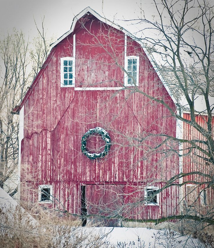 winnebago county, iowa barn decorated for christmas