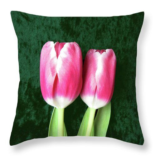 Two red #tulips on green #velvet. Unique and fantastic #pillow design and #photography. Welcome to have a closer look! #hurmerintadesign