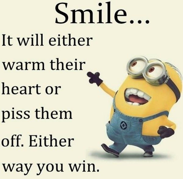 Minion Quotes: Best 25+ Tuesday Quotes Funny Ideas On Pinterest