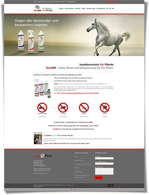 Update der Internetseite and Shop von Kerbex.de