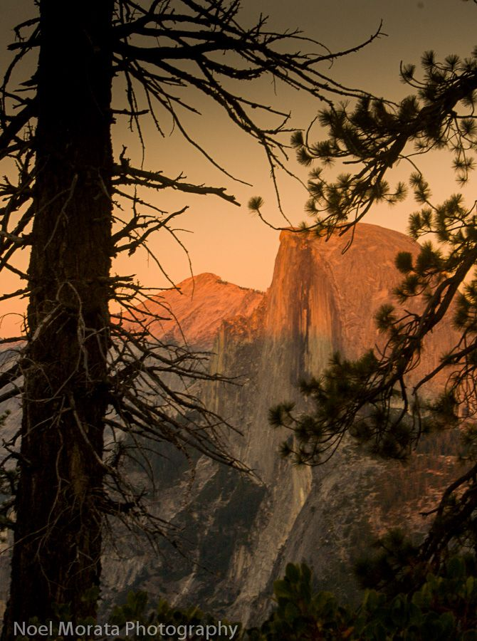 Scenic hike to Glacier Point in Yosemite Valley. This is one of the most scenic hikes in the valley to the top of Glacier Point with panoramic views of the entire valley. Tips and places to photograph are included