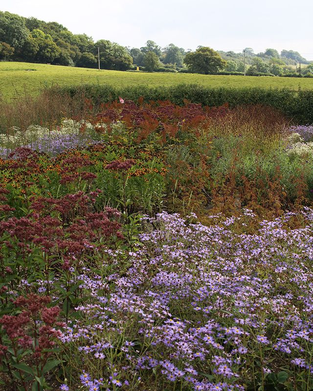 Piet Oudolf, Public Garden, Hauser & Wirth, Somerset
