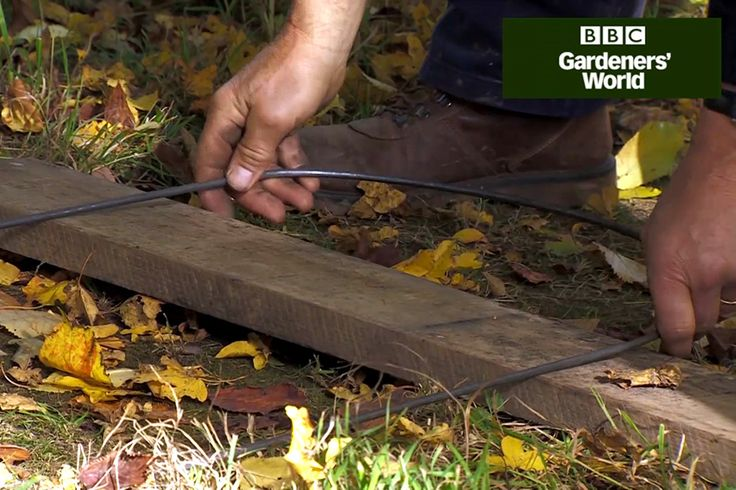 Monty Don shows how to make easy DIY plant supports, using 6mm steel rods that are bent into shape, in this practical video guide on gardenersworld.com.