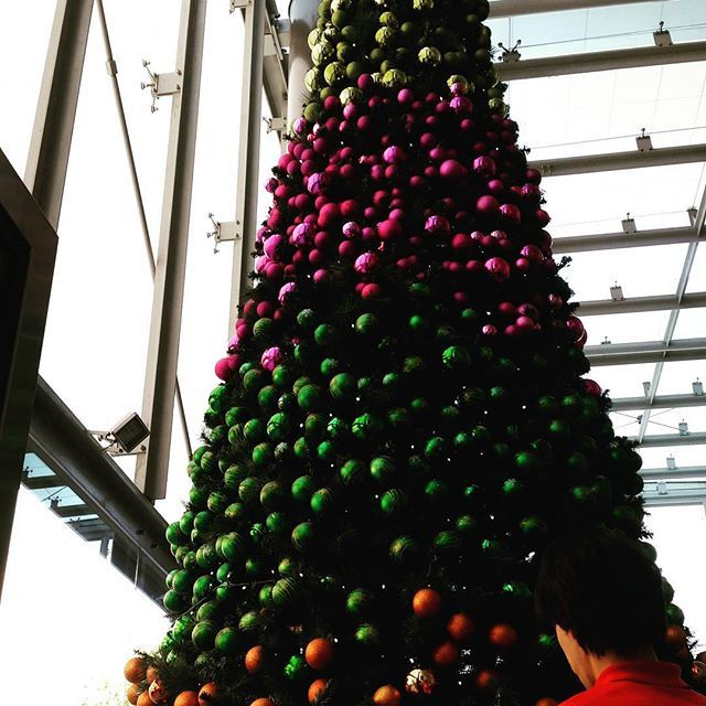 A rainbow of colours on this 6m Christmas tree. Representing the 5 colours of Sensis brand.  Melbourne CBD.  Available for hire.