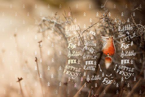 Liška s houpajícím se ocáskem