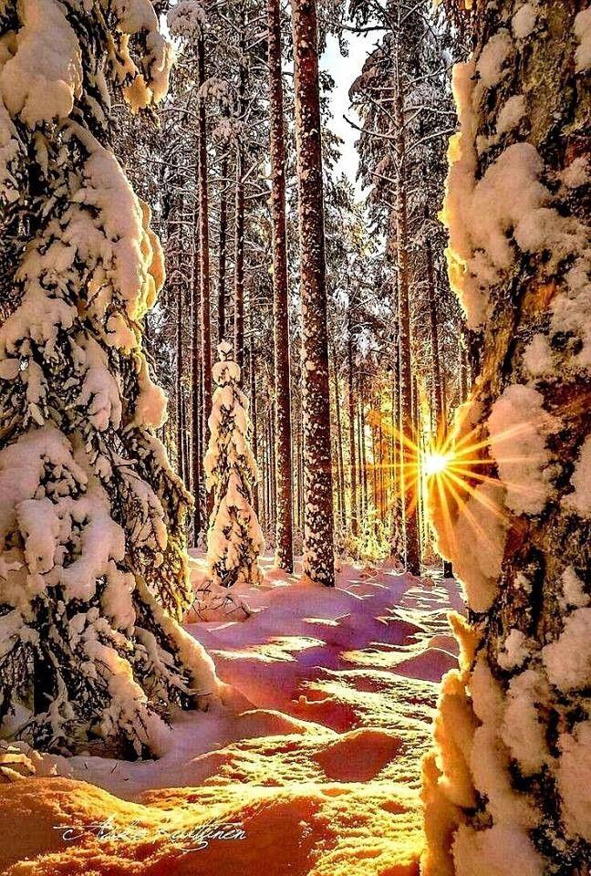 Зимние красивые картинки
