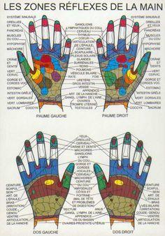 reflexologie des mains