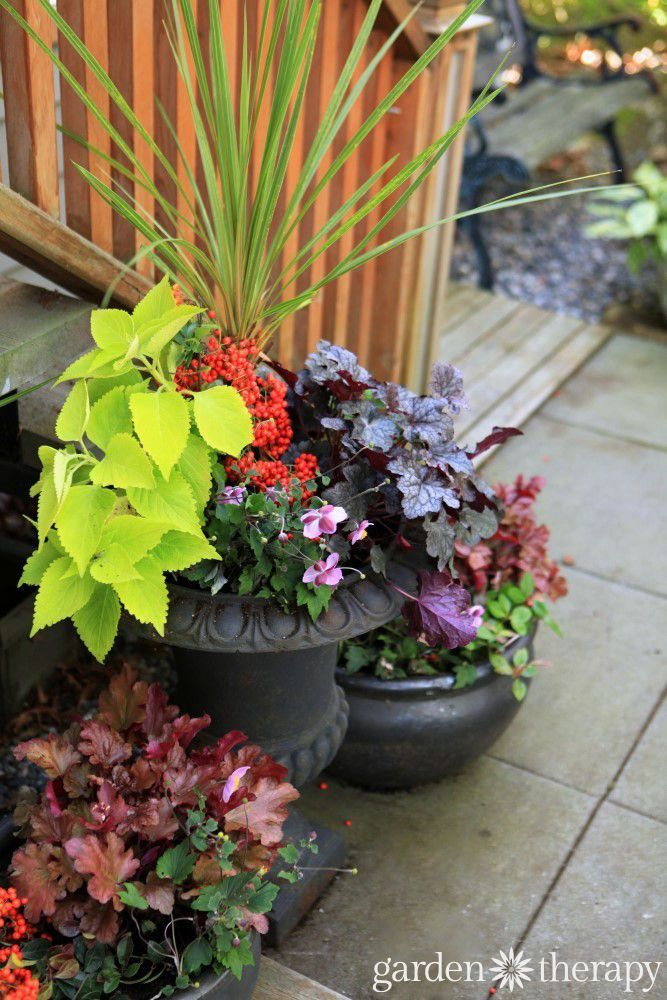 Charming Made For The Shade: Low Maintenance Fall Planters Bursting With Colour