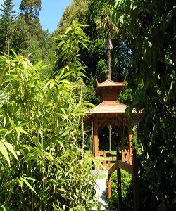 Tour a Wicklow: Jardines de Powerscourt y Glendalough en ESPANOL   Irlanda En Español