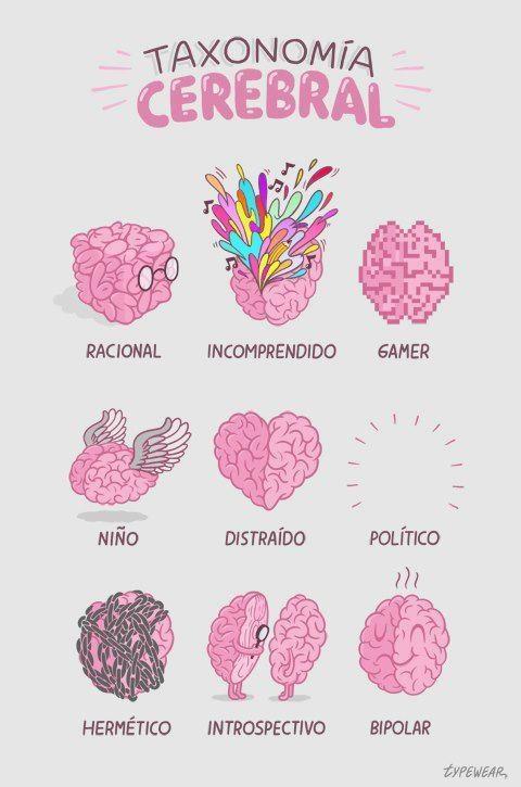 Taxonomía cerebral. by Typewear