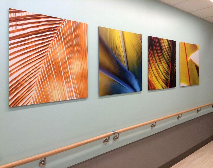 Moxie Graphic Panels as Art Work at Johns Hopkins Hospital 1