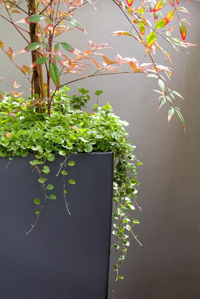 Moderní venkovní květináč