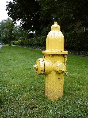 A yellow fire hydrant in Rochester  http://www.flickr.com/photos/tietoukka/2429170594/
