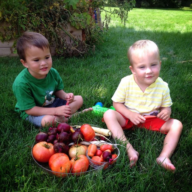 Teaching the boys about the importance of sustainability and where our food comes from.