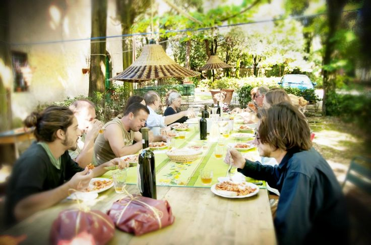 WWOOF Tips|How to volunteer on your first organic farm.