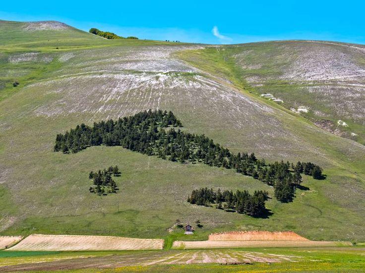 Foresta Italia - Sibillini Mountains