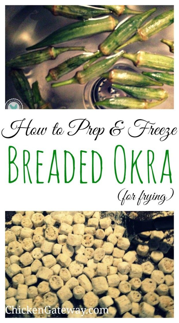 Freezing Breaded Okra for Frying | ChickenGateway.com