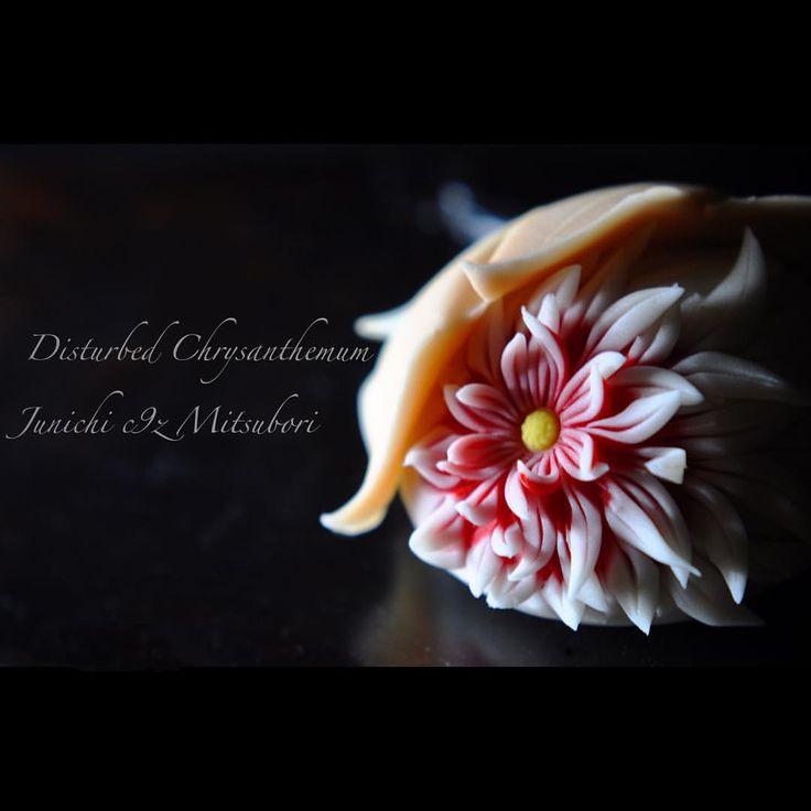 disturbed chrysanthemum