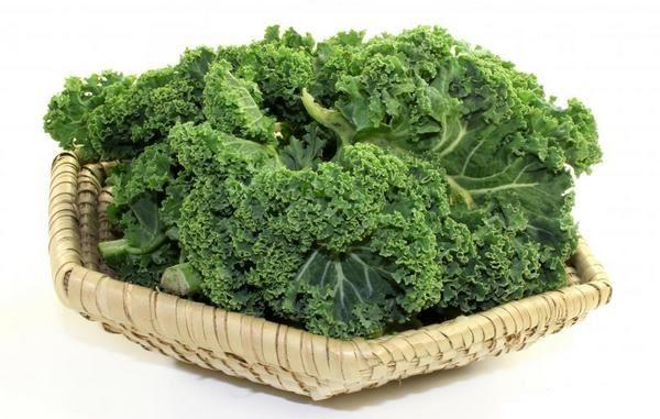 Капуста кале для корисного здорового харчування