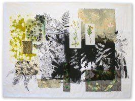 Creation: Ferns