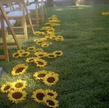 Wedding aisles- I think they would be prettier somewhere besides getting stepped…