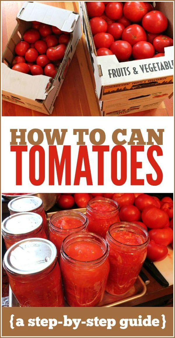 How to Can Tomatoes: A step-by-step guide