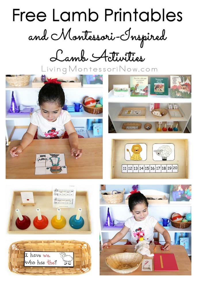 A variety of free lamb printables along with ideas for preparing Montessori-inspired activities using printables for preschoolers through first graders.