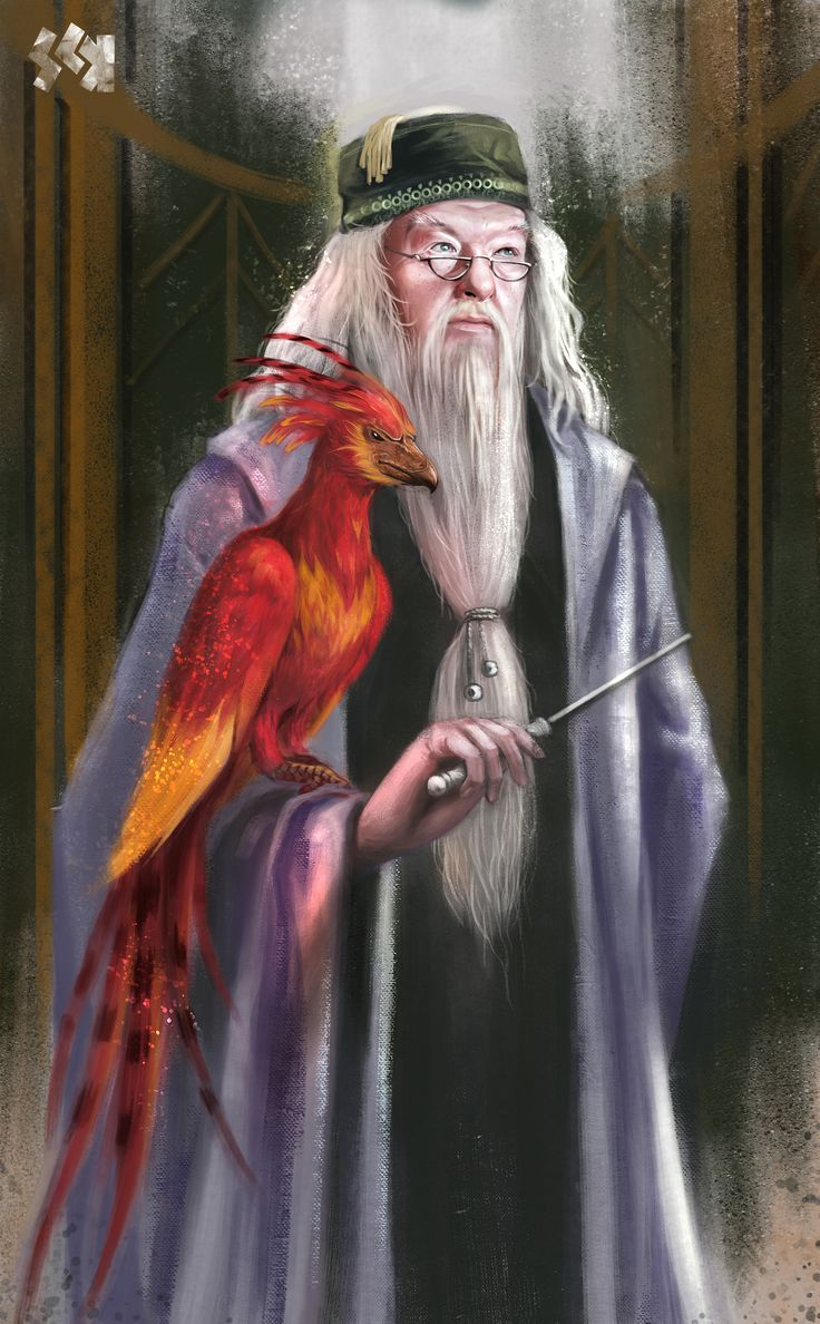 """It is the unknown we fear when we look upon death and darkness, nothing more.""  Albus Dumbledore    and Fawkes Phoenix. Gorgeous art but I wish the artist had painted a long skinny crooked nose instead of Michael Gambon's nose."