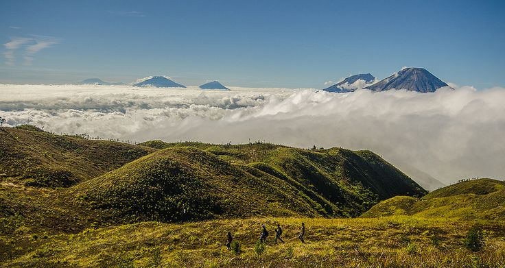 Just another morning at Mount Prau - indonesia
