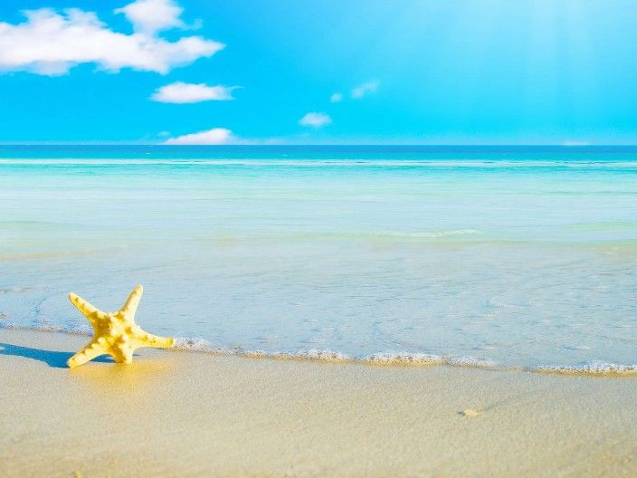 Gambar pemandangan pantai dengan bintang laut