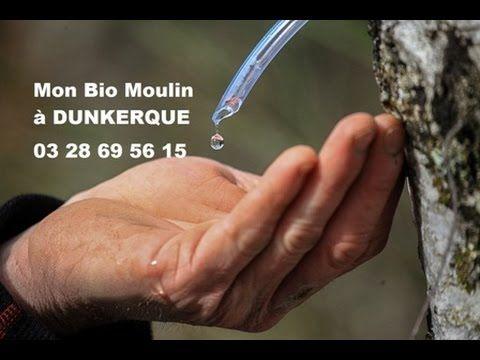 Sève de Bouleau à Dunkerque -  Mon Bio Moulin à Dunkerque