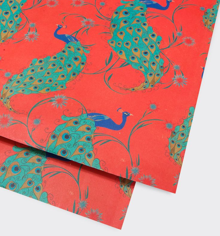 Peacock Gift wrap by Carrie May | LAGOM DESIGN