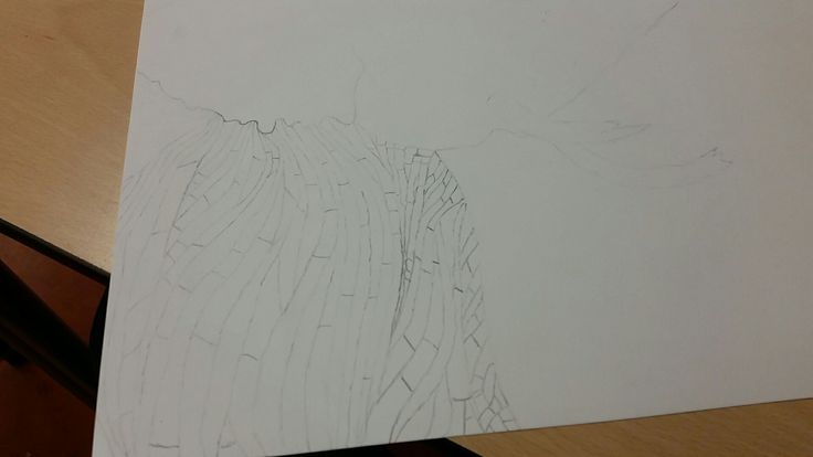 Nu heb ik de huid van de olifant getekend, even arceren en nog wat dingen verbeteren, daarna ga ik naar het hoofd van de olifant; ik vind het goed gelukt