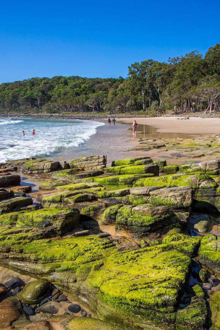 Noosa Heads National Park on the Sunshine Coast in Queensland, Australia