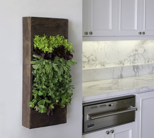 viking microwave drawer + marble + wall planter