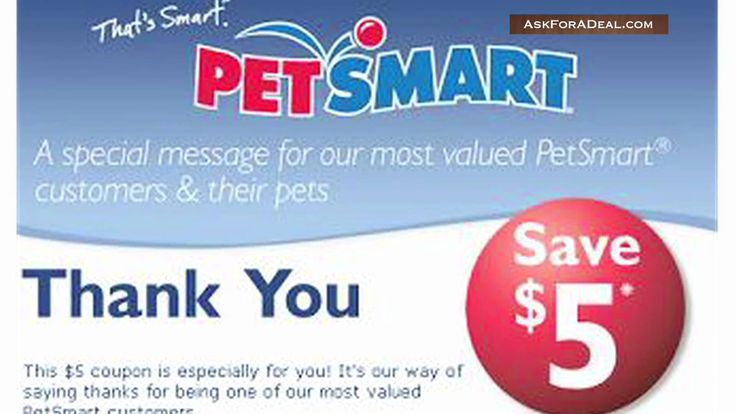 The strategy you need to utilize to get started your Petsmart Grooming Hours are depends upon the kind of canine coach you want to be and your time dedication amount. Could you desire to primary principal puppy training courses and work only part time.
