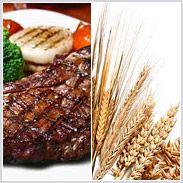 Protéines : les meilleures sources