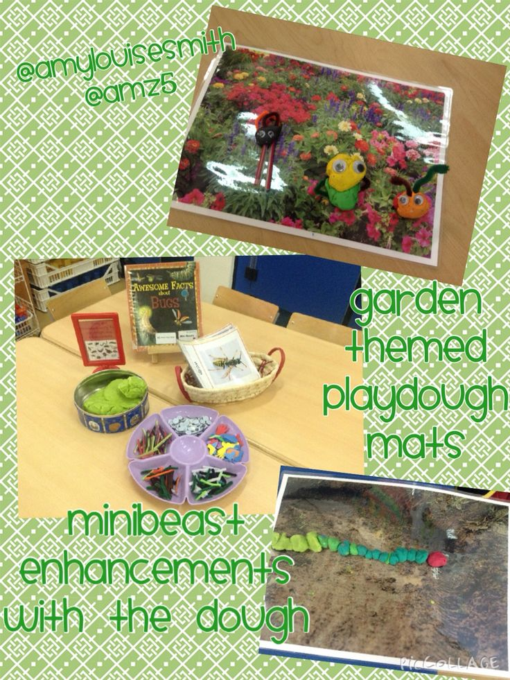 Minibeast enhancements in the dough area with garden themed photograph mats
